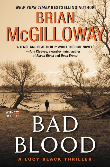 Bad Blood by Brian McGilloway