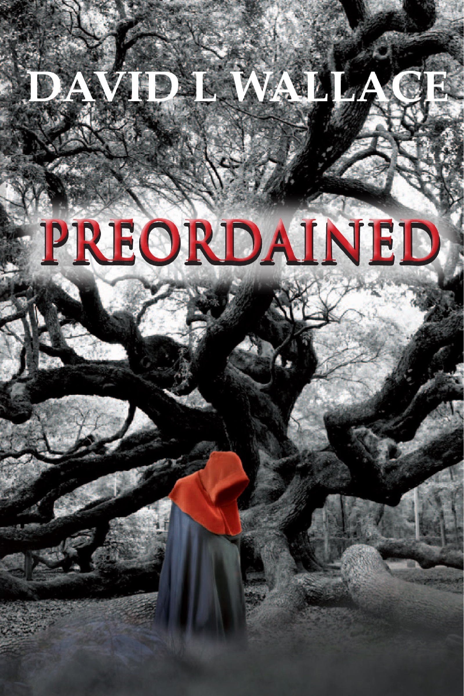Preordained by David L Wallace