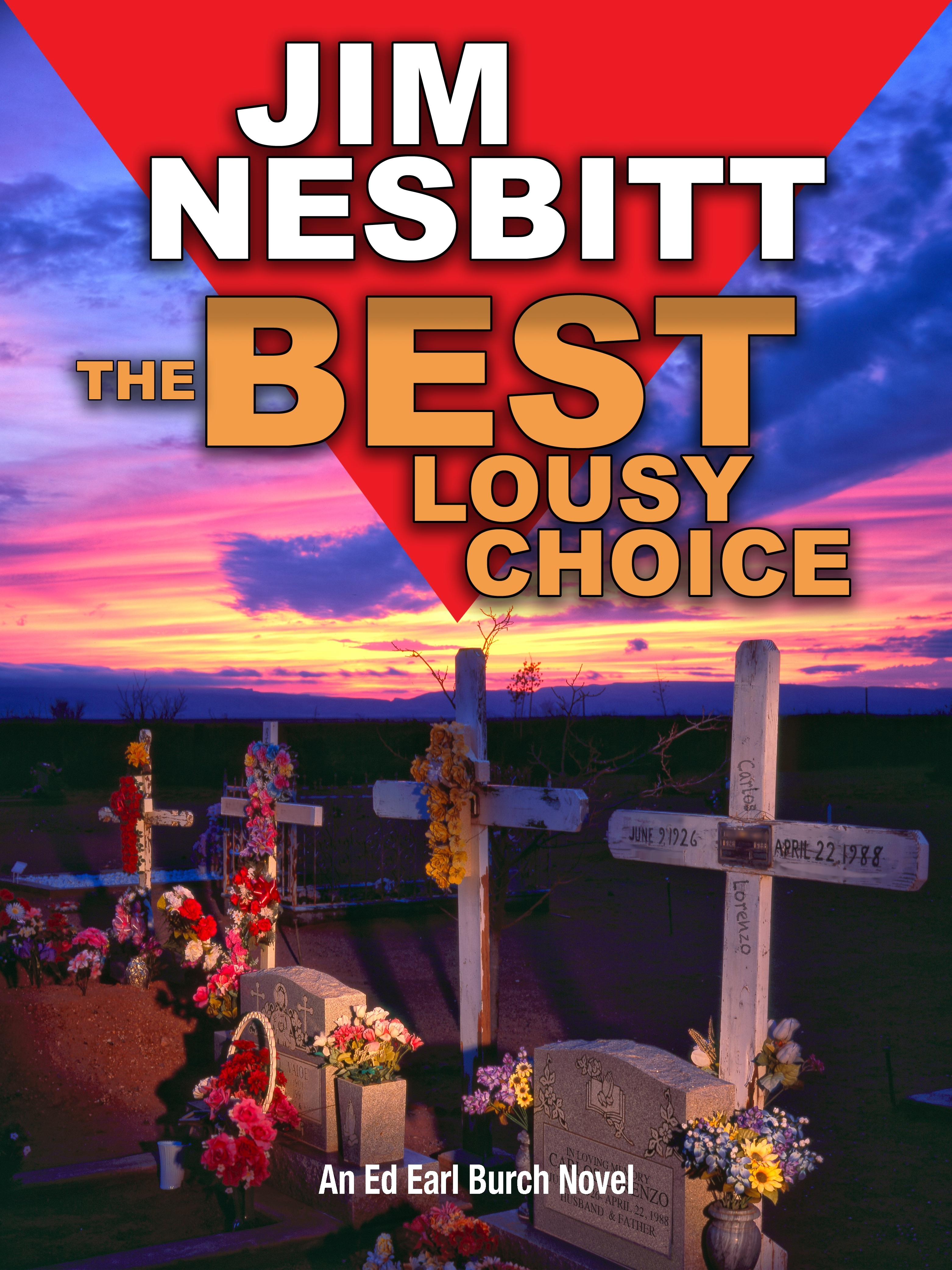 The Best Lousy Choice by Jim Nesbitt