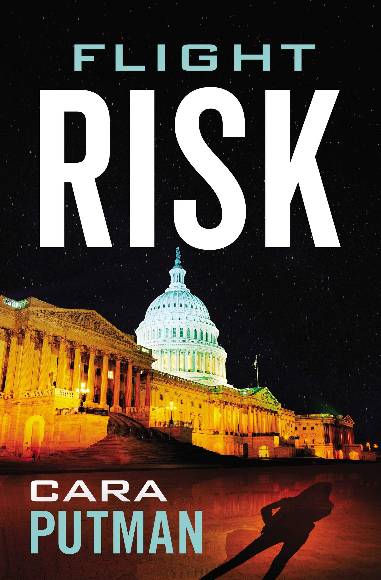 Flight Risk by Cara Putman